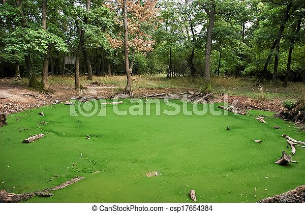 Algen im teich cool hier sieht man ein bichen wie die for Salz gegen algen gartenteich