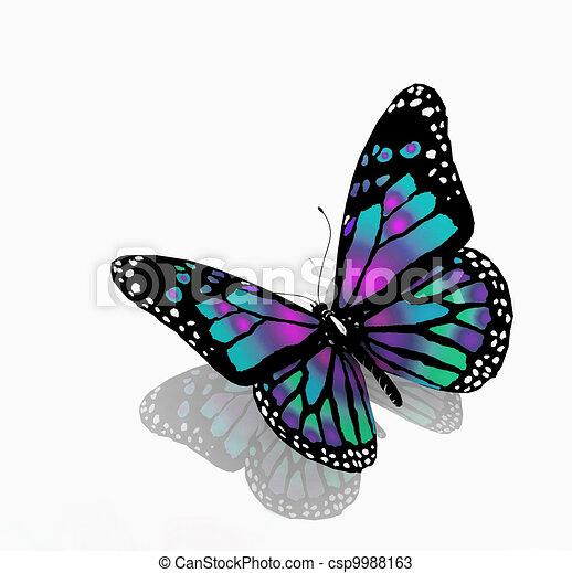kleur, blauwe achtergrond, vrijstaand, vlinder, witte  - csp9988163