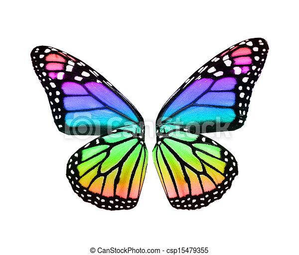 kleur, vlinder, vleugels - csp15479355