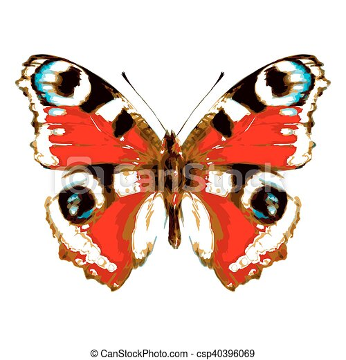 kleur, witte , vlinder - csp40396069