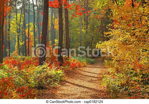 kleuren, herfst - csp0182124