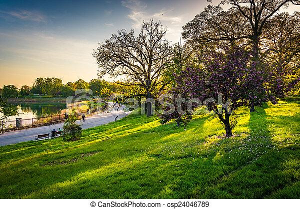 kleurrijke, meer, bomen, druid, park, heuvel, baltim, aanzicht - csp24046789
