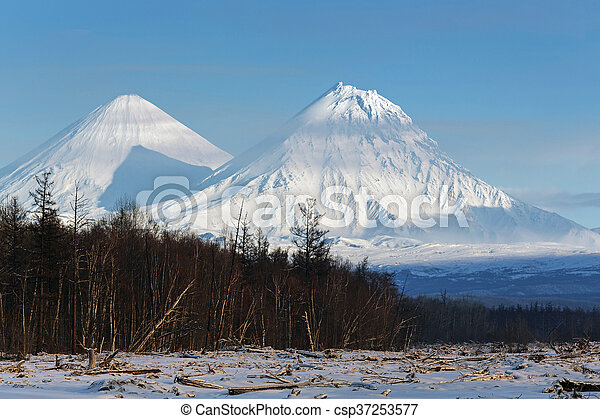 Klyuchevskoy Volcano and Kamen Volcano on Kamchatka Peninsula - csp37253577