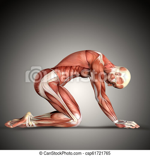 knieling, render, medisch, 3d, figuur, positie, mannelijke  - csp61721765