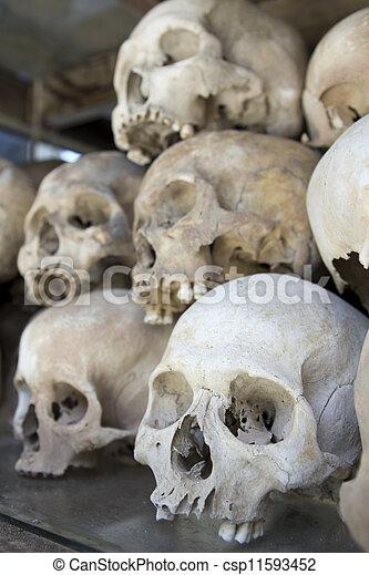 Knochen, feld, schädel, tötung. Knochen, schädel, feld, cambodscha ...