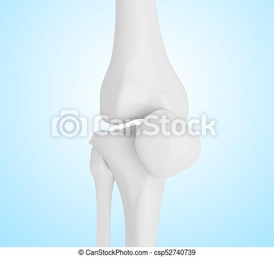 Knochen, knie, menschliche , abbildung, 3d. Illustration ...