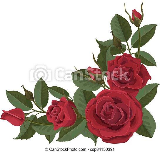 knospen bl tter rosen gr n blumen rotes composition knospen element hintergrund. Black Bedroom Furniture Sets. Home Design Ideas