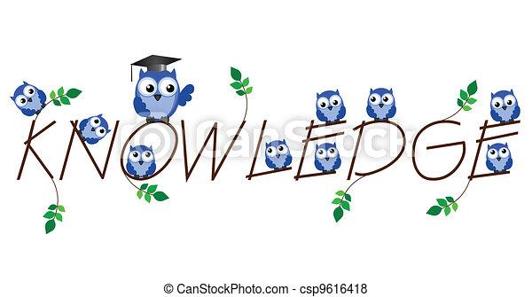 Knowledge - csp9616418