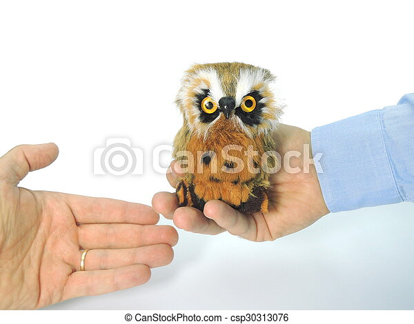 Knowledge Transfer Symbolized By Handing Over An Owl A Symbol Of