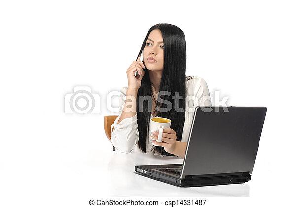 kobieta handlowa, szczęśliwy, portret, laptop - csp14331487