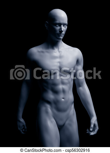 Der menschliche Körper - csp56302916