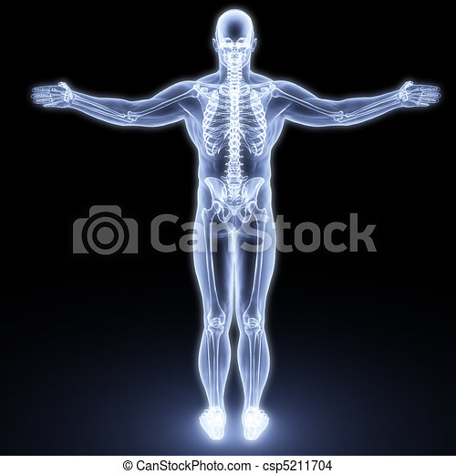 koerper, menschliche  - csp5211704