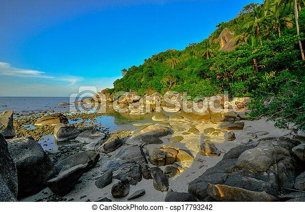 Playa tropical panorámica con palma de coco. Koh samui, - csp17793242