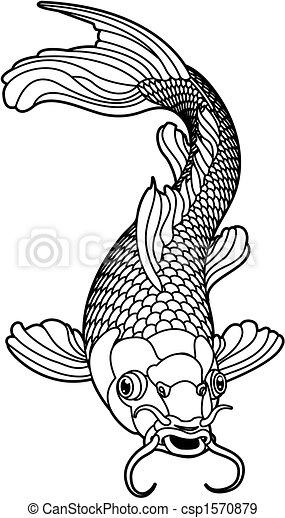 koi 鯉魚, 黑色, 白色的魚 - csp1570879