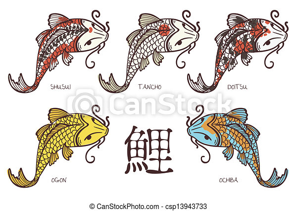 Koi hi roglyphe carpe carp japonaise classification for Vente de carpe koi japonaise