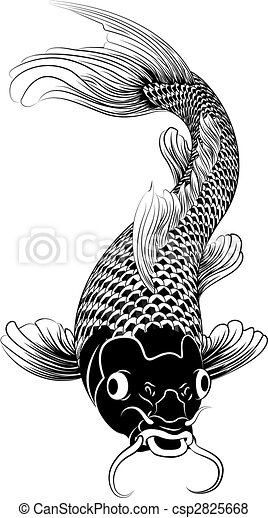 Dessin Carpe Japonaise koi, kohaku, carpe, fish, illustration. beau, koi, chinois, carpe