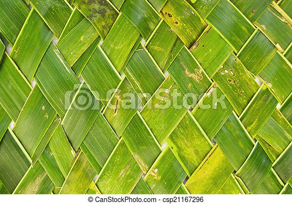 Kokosnuss Basteln Blatt Stil Thai Hintergrund Coco Kunst