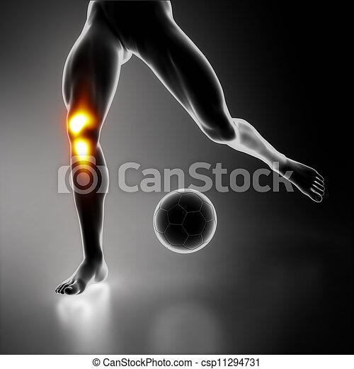 kolano, sport, akcentowany, połączenie - csp11294731