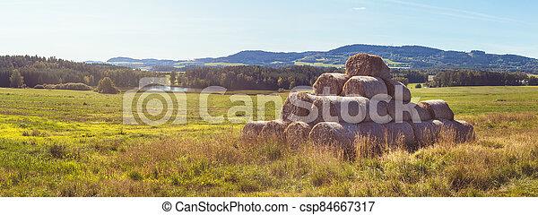 komín, rybník, grafické pozadí, bojiště, pohroma, louka, pastvina, les, krajina, maličkost, vyvýšenina - csp84667317