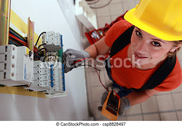 kontrola, box, pojistka, elektrikář, samičí - csp8828497