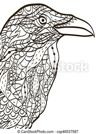 Kopf, färbung, erwachsene, vogel, vektor, buch, rabe. Kopf ...