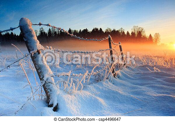 koude, warme, ondergaande zon , winter - csp4496647