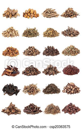 Chinesische Kräutermedizin - csp20363575