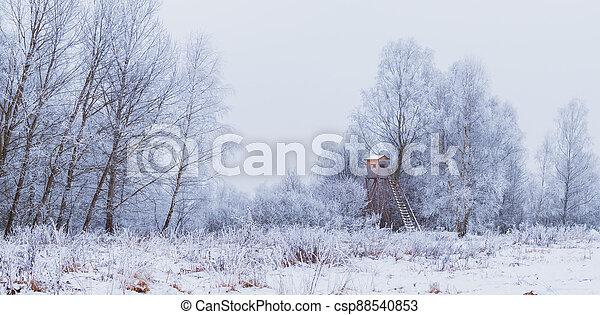 krajina, dřevěný, slepý, sněžit, zima, honba - csp88540853