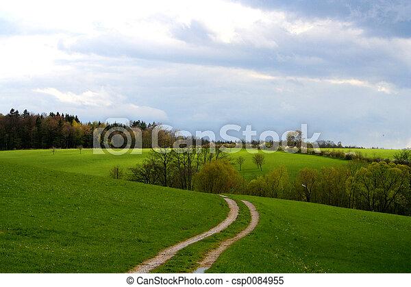 krajobraz - csp0084955