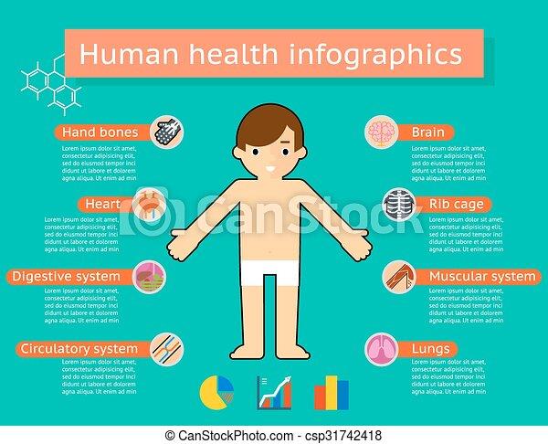 kropp, medicinsk, system, mänsklig, infographics - csp31742418