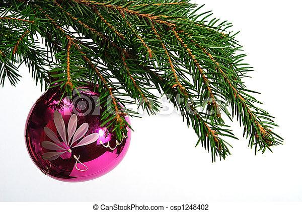 Kugel Für Tannenbaum.Kugel Zweig Tannenbaum Rotes