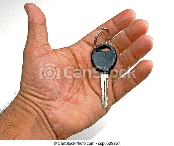 kulcs, kéz - csp0539267