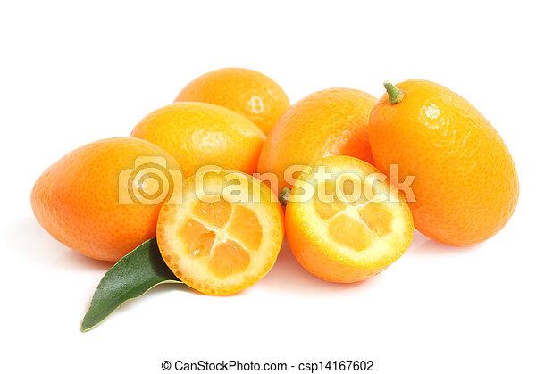 Kumquat with leaf - csp14167602