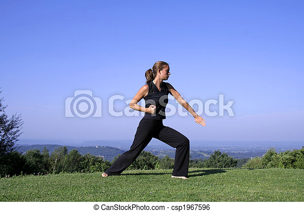 kung fu - csp1967596
