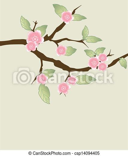 květ, třešeň, -, pohled - csp14094405