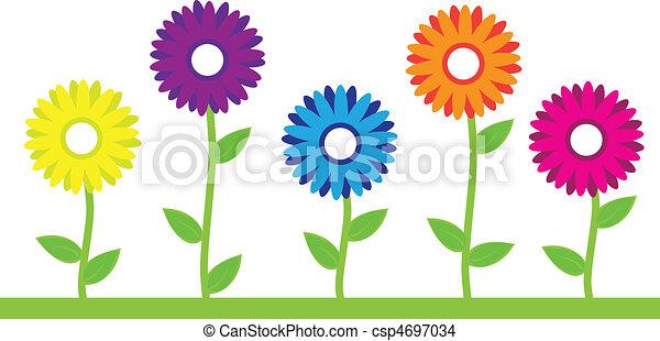 květiny, barvitý - csp4697034