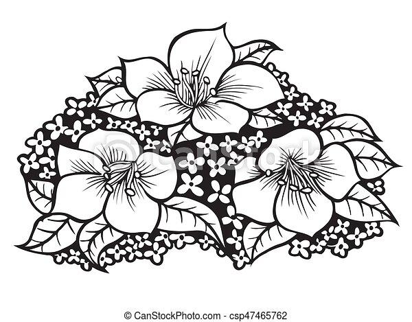 Kvetiny Kresleni Illustration Illustration Osamoceny Rukopis