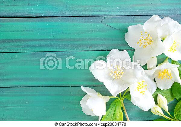 květiny - csp20084770