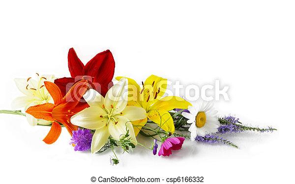 květiny - csp6166332