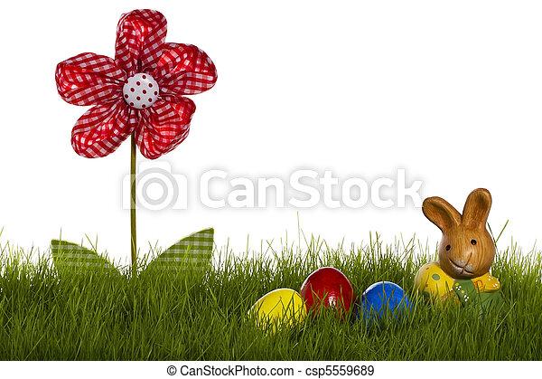 kwiat, jaja, tło, mały, biały, trawa, wielkanocna trusia, draperia - csp5559689