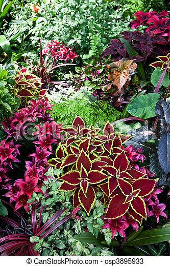 Super Kwiat, pokrzywka, czerwony. Kwiat, pokrzywka, tło, czerwony. YV88