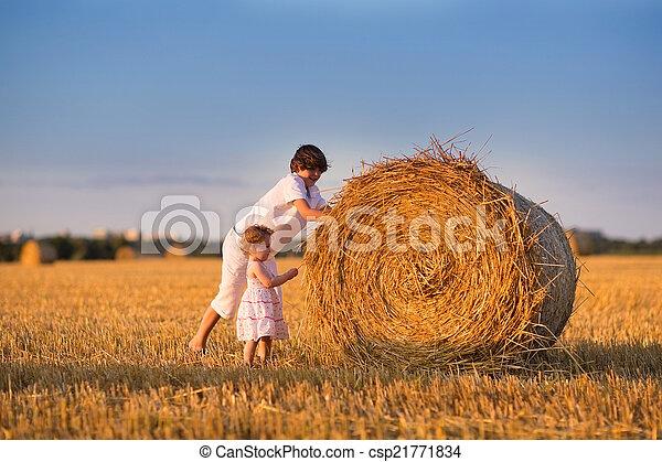 lánytestvér, széna, rámenős, testvér, mező, napnyugta, csecsemő, bajok - csp21771834