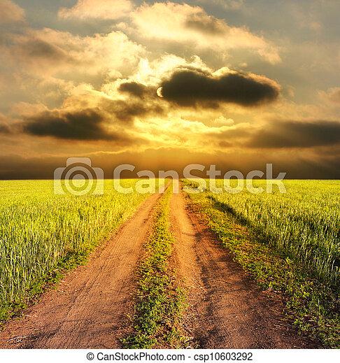 Abend ländliche Landschaft mit einer Straße - csp10603292