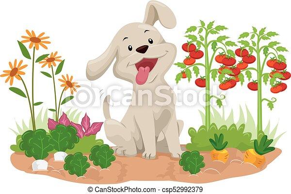 légume, chien, illustration, jardin - csp52992379