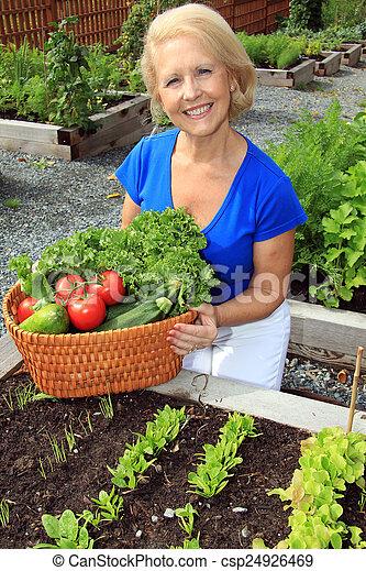 légume, dame, jardinier - csp24926469