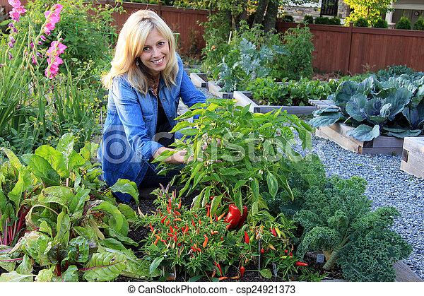 légume, dame, jardinier - csp24921373
