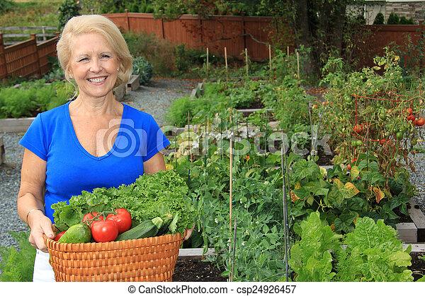 légume, dame, jardinier - csp24926457
