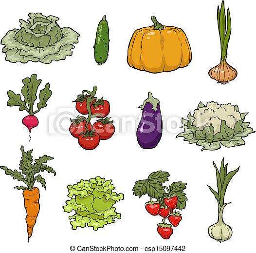 légumes, ensemble - csp15097442