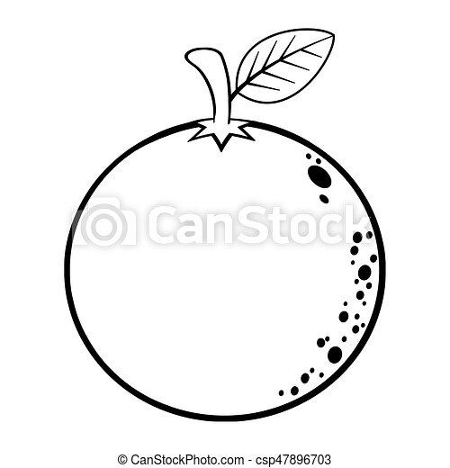 Líneas, caricatura, fruta, negro, naranja, blanco, dibujo. Drawing ...
