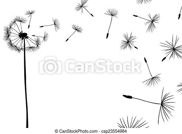 Dandelions - csp23554984